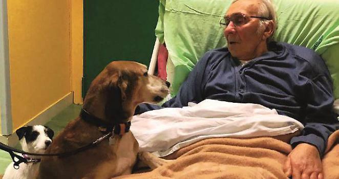 Elvio Donattini è morto circondato dai cani