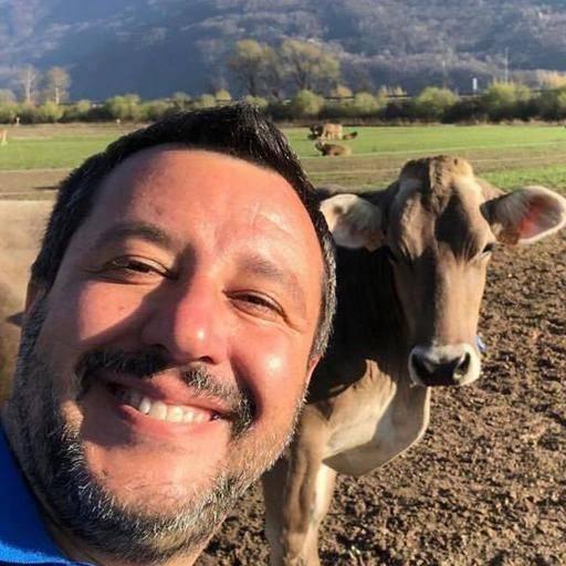 Salvini come Mussolini - Leggilo.Org