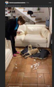 """Benedetta Rossi arrabbiatissima con lui: """"Chi ha fatto tutto questo casino?"""""""