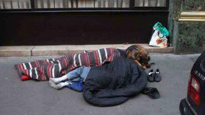 Modena, senzatetto chiede elemosina con cucciolo: sequestrato