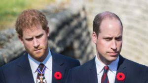 William ed Harry